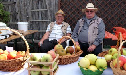 Gute Apfelernte und ein fröhliches Fest