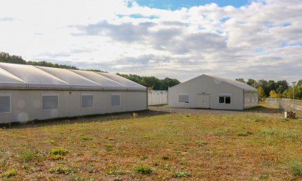 1 Mio. Euro pro Jahr für leere Hallen