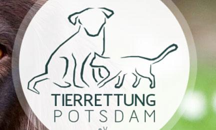 Logowettbewerb für die Tierrettung