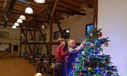 In Marquardt erstrahlen die Weihnachtsbäume