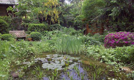 Offene Gärten im Mai
