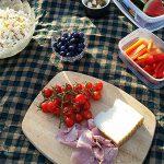 4. Picknick für freien Uferweg