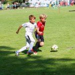 Stephan-Albrecht-Cup