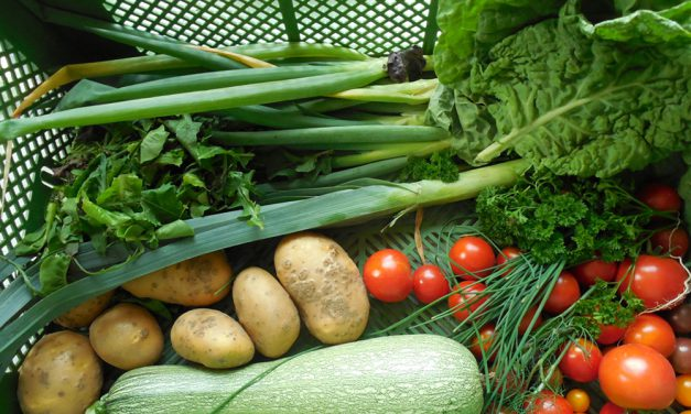Paten für Bäume und Depot für Gemüse gesucht