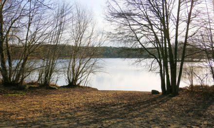 Offizielle Badestelle am Groß Glienicker See