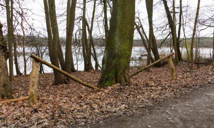 Naturschutzprojekt am Sacrower See