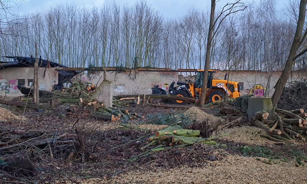 Der alten Schafstall wurde Anfang Februar abgerissen. Zahlreiche Bäume mussten fallen.