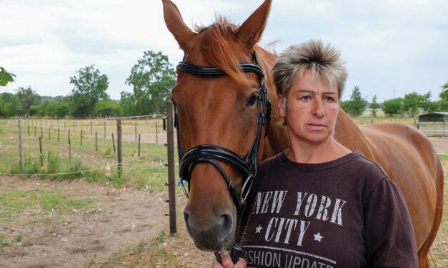 Mama Mia, was für ein Pferd!
