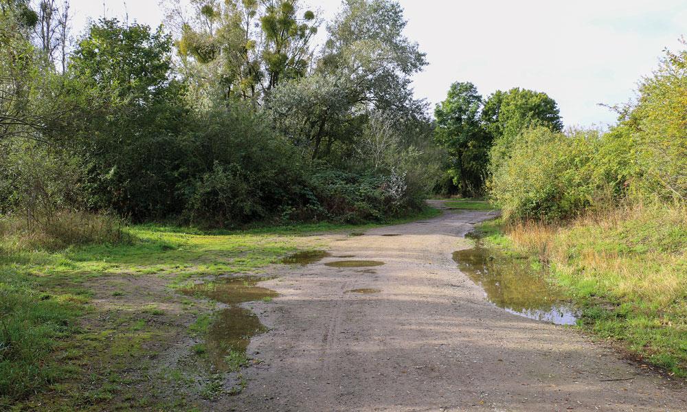 Links und rechts des Weges sind Sträucher dort heruntergefahren, wo Autos wild parkten, damit soll jetzt Schluss sein.