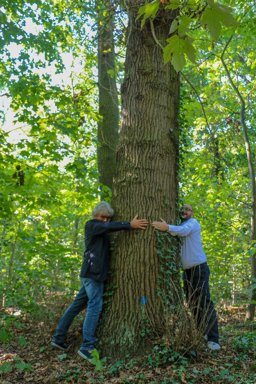 Alter Baumbestand im Ortsteil Sacrow ist Lebensraum zu schützender Fledermausarten. Hier plant Vodafone den Bau des Mobilfunkmastes.