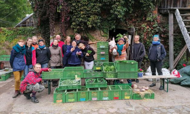 Regionales Gemüse macht glücklich