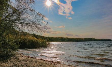 Hoffnung für den Sacrower See?