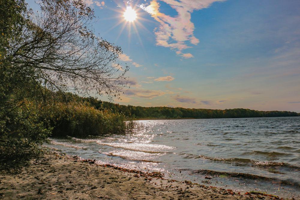 Der Sacrower See. So schön wie er ist, so dringend braucht er auch die Hilfe von außen
