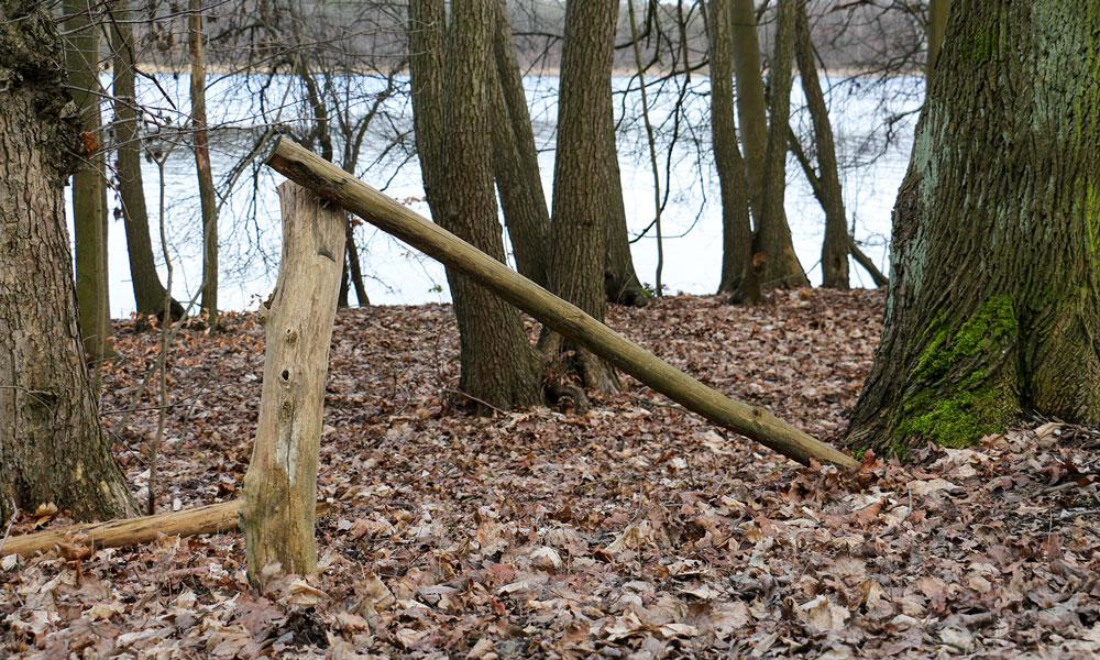 Die neuen Handläufe am Sacrower See sollen Tiere und Pflanzen an der Uferzone schützen