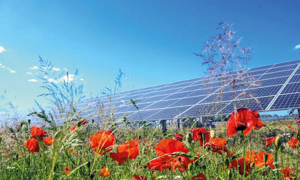 Solarpark auch bald in Potsdam