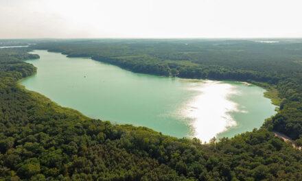 Seen im Potsdamer Norden trocknen aus