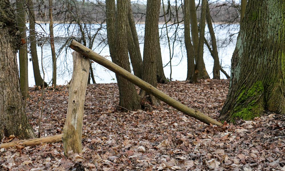 Die neuen Handläufe um den Sacrower See sollen Tiere und Pflanzen an der Uferzone schützen