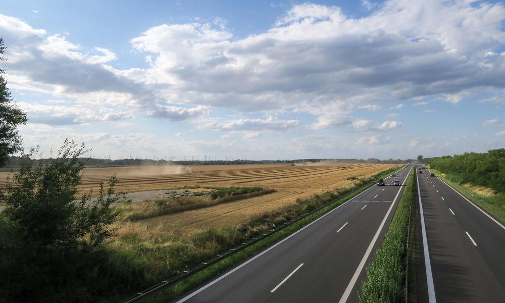 Weizenernte auf dem Acker, auf dem die Autobahn GmbH die Raststätte errichten möchte. Das Feld zählt zu den fruchtbarsten Äckern Potsdams