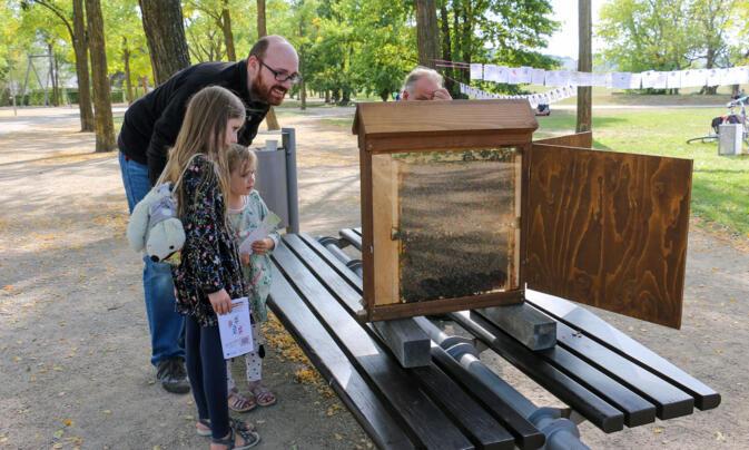 Für Groß und Klein ist es spannend, den fleißigen Bienen bei der Arbeit zuzusehen.